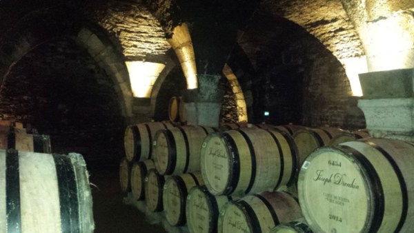 Beaune - wine tasting