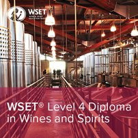 5 Reasons to Start the WSET Diploma this Summer