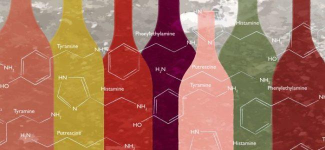 ammine biogene