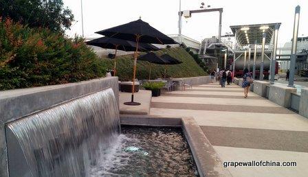lodi wine visit with california wine institute (3)