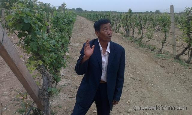 ningxia winery tour may 2018 legacy peak
