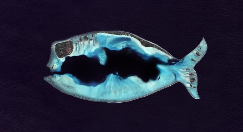 Une ile en forme de poisson d'avril