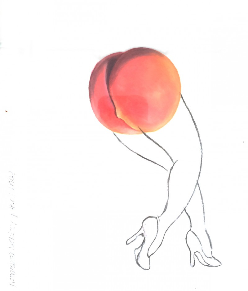 jambe-fesse-abricot-dessin-erotique