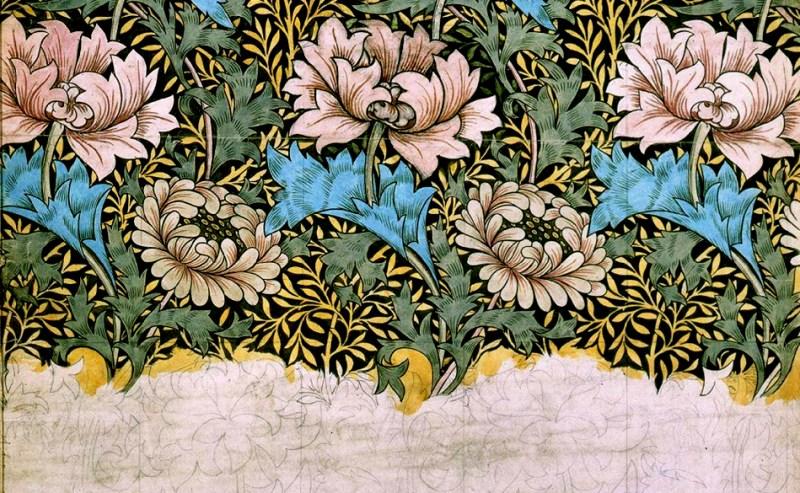 chrysanthemesmorris-sketch