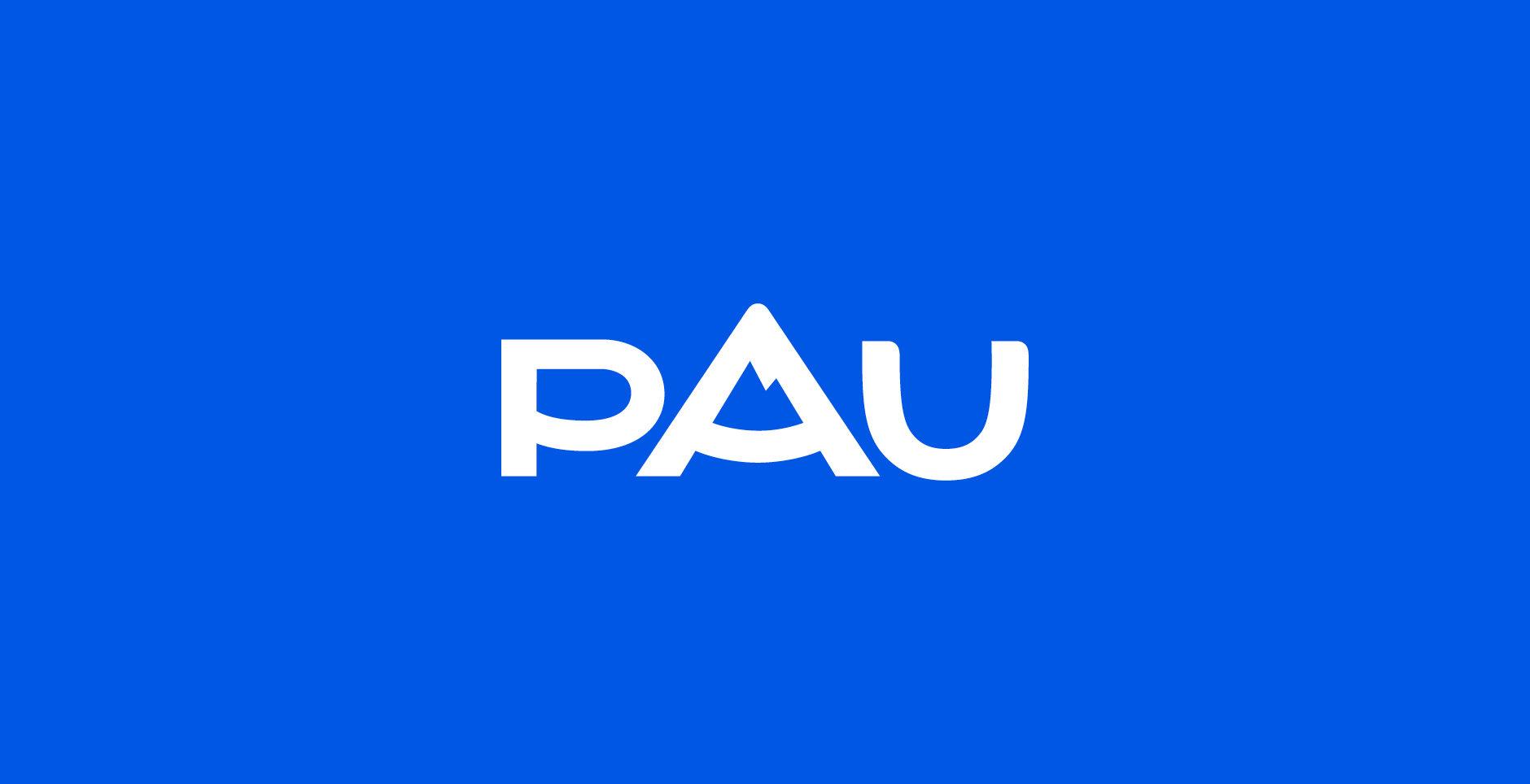 Case_study_Pau2