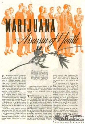 marijuana-interdiction-USA