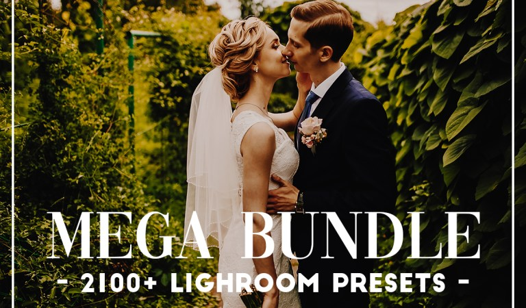 2100 Lightroom & ACR Presets Bundle