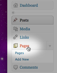 Screenshot of cursor on Pages in sidebar