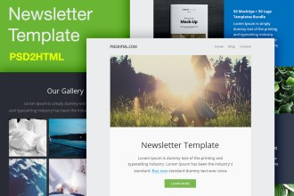 Free Newsletter Template (PSD & HTML)