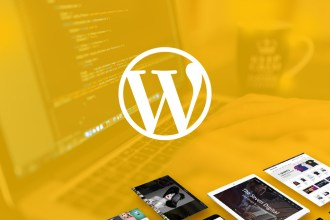7 Reasons Why a Customizable WP Theme Will Make You Look Good