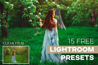 15 Free Lightroom Presets