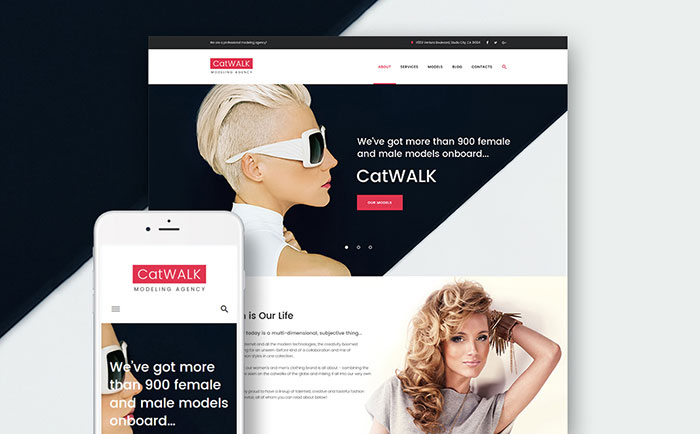 Model Agency WordPress Theme