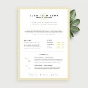 resume-template-psd-free-19