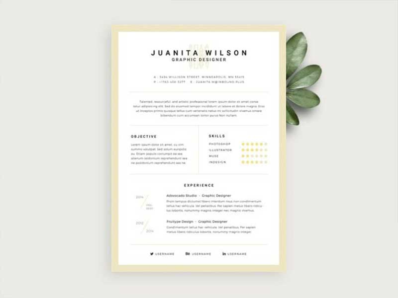 20 Best Resume Template Psd Free Download Graphicslot