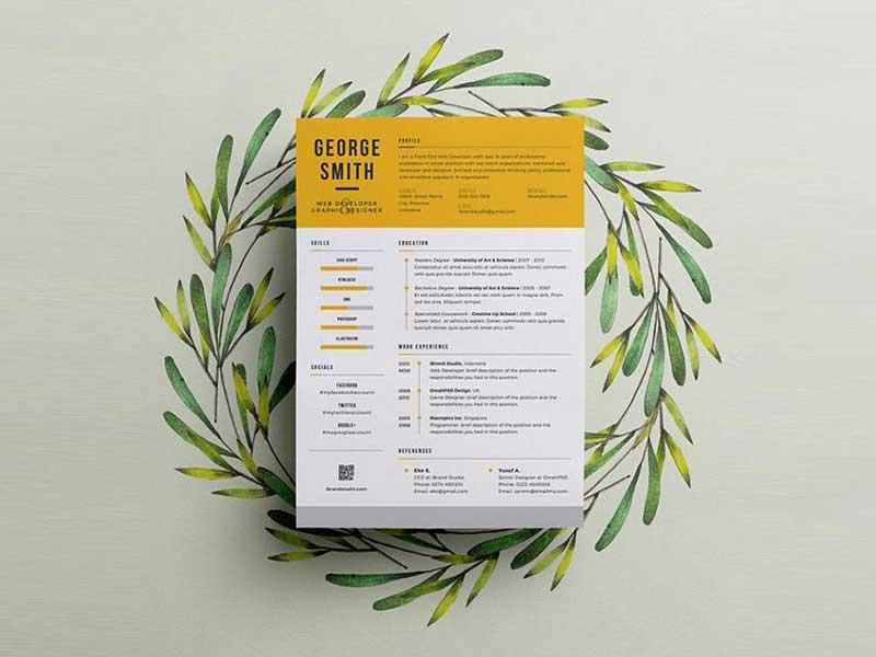 resume-template-psd-free-9