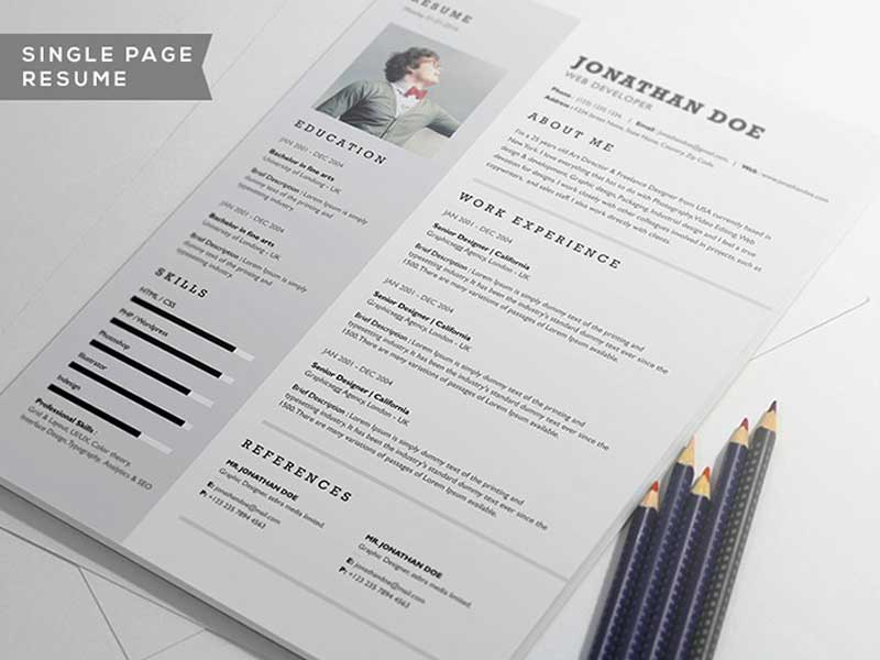 professional-resume-2