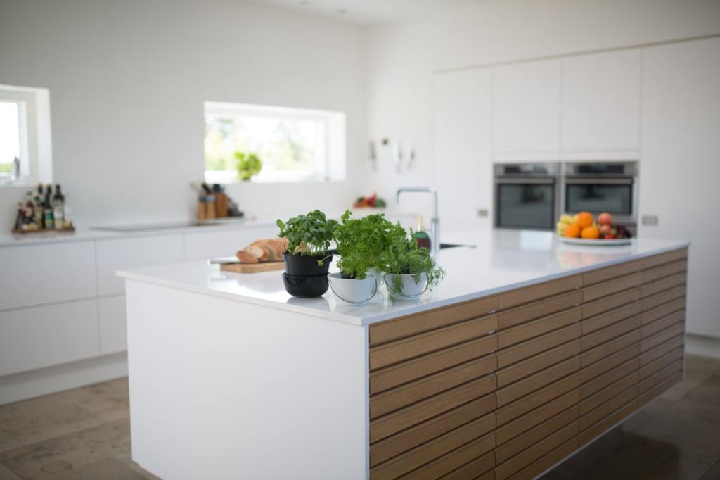 modern kitchen with green leafed plants on kitchen island