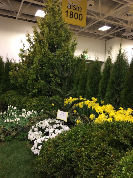 the Minneapolis Home and Garden Show