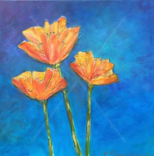 """Just Poppies - 20"""" x 20"""" - $875"""