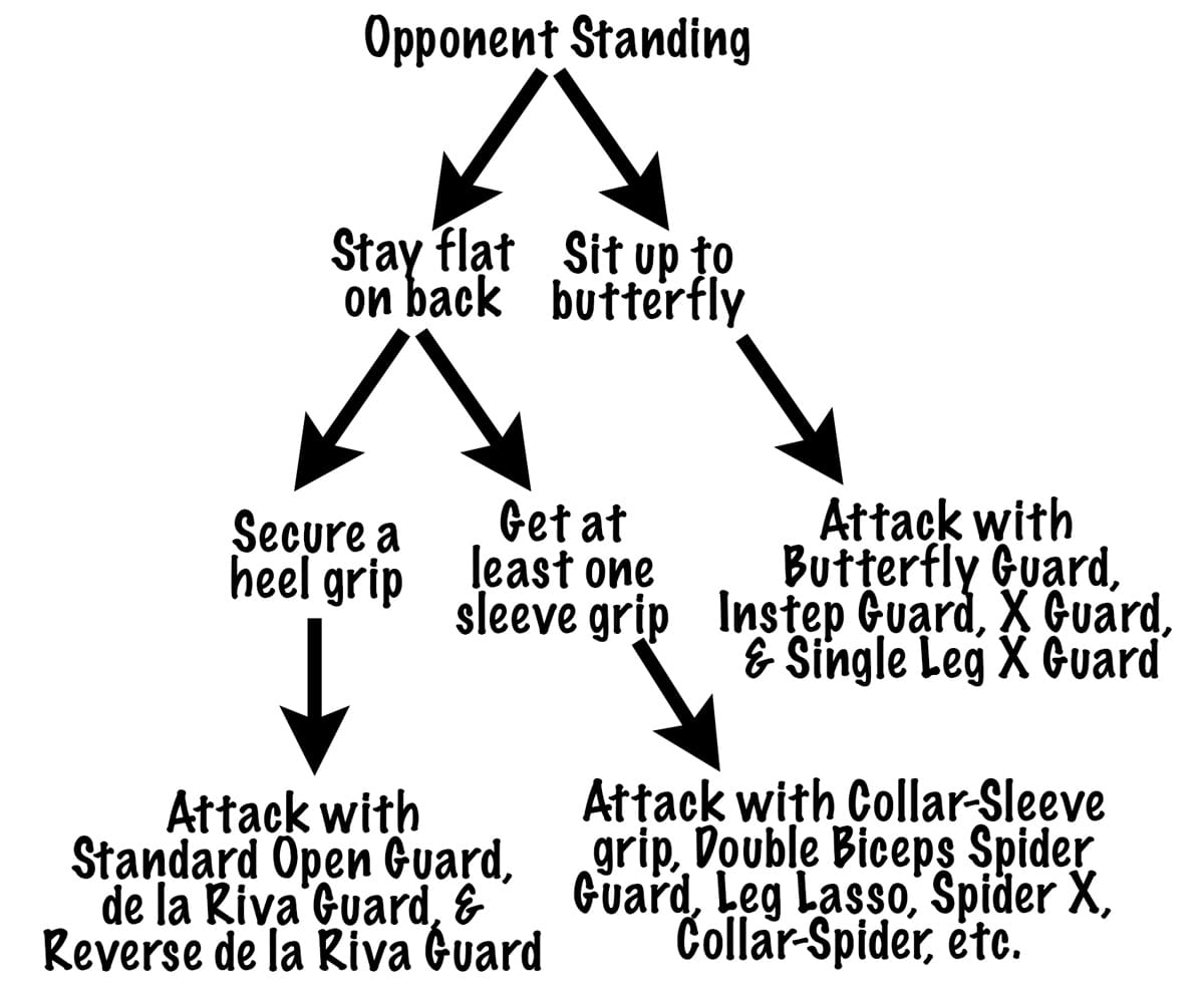 Your Open Guard Options Vs Standing Opponents