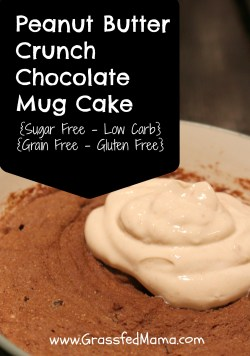 Sugar free, grain free, gluten free, low carb peanut butter chocolate cake