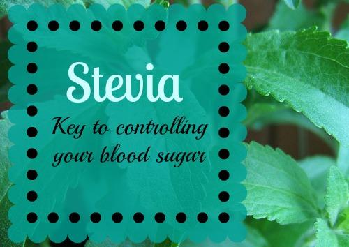 stevia, natural sweetener