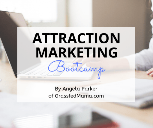 Attraction Marketing Bootcamp