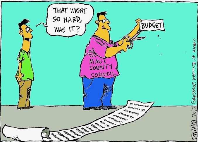 Maui lawmakers deserve praise for cutting budget