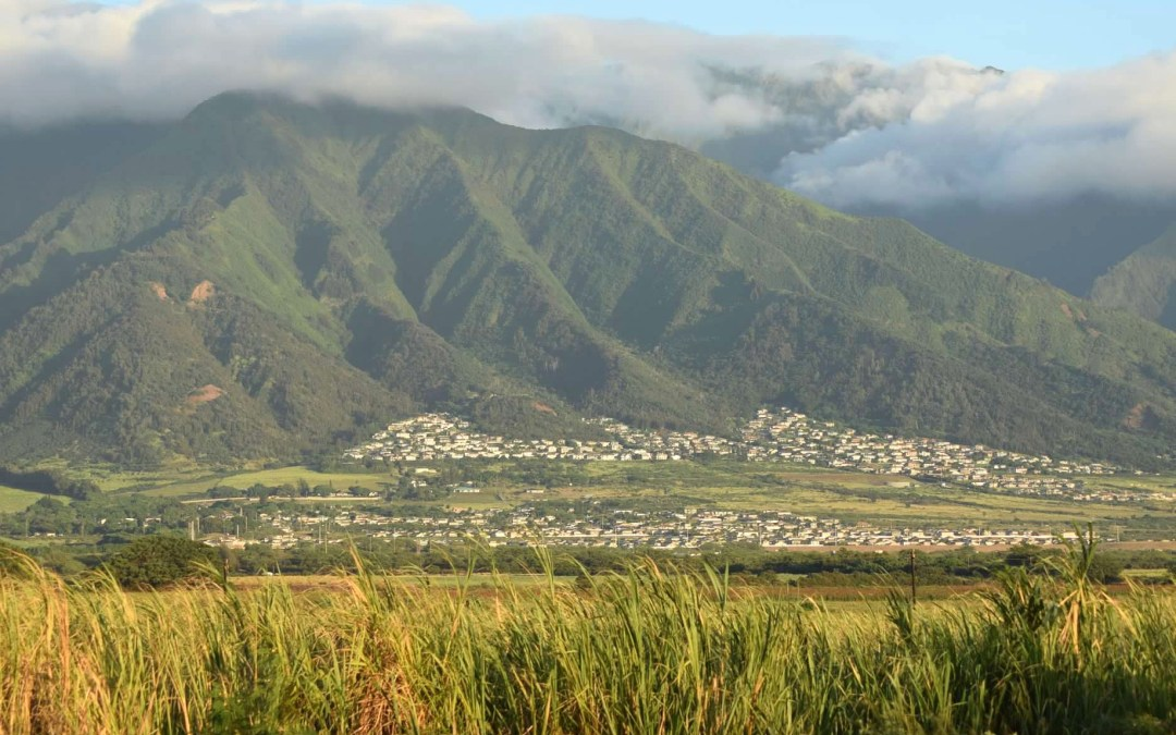 Testimony on Maui 'affordable housing' proposal