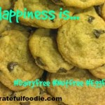 Yum: Nut Egg Dairy Free Choc Chip Cookies