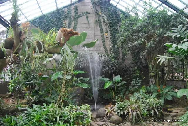 Botanical gardens in Bogor.