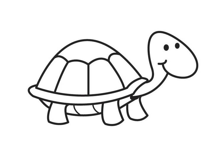 Dibujar Amor Google De Imagenes Para