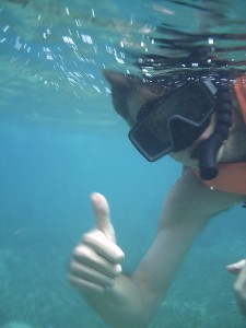 Snorkeling as part of our jungle tour (you get your own boat!)