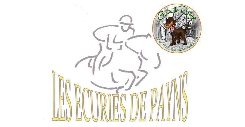 H:\Client_HWC\Gratouille-Refuge\Collectes\Ecurie de Payns\Une-Logo-Ecurie-de-Payns-Gratrouille.jpg