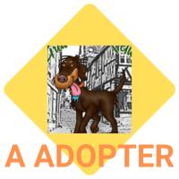 A adopter