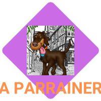 A parrainer