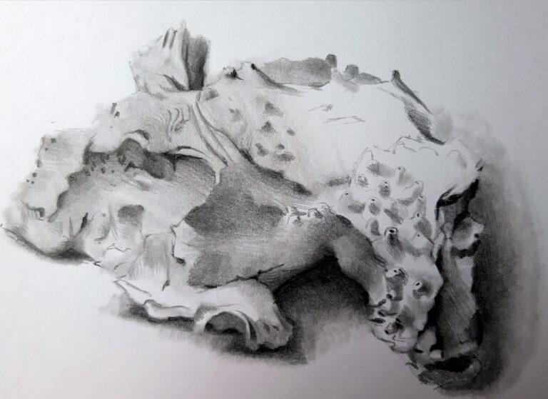 Zeichnung eines Stücks Holz