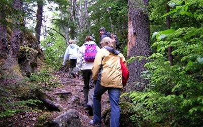 Camping Hiking In Winter Season Planning And Tips