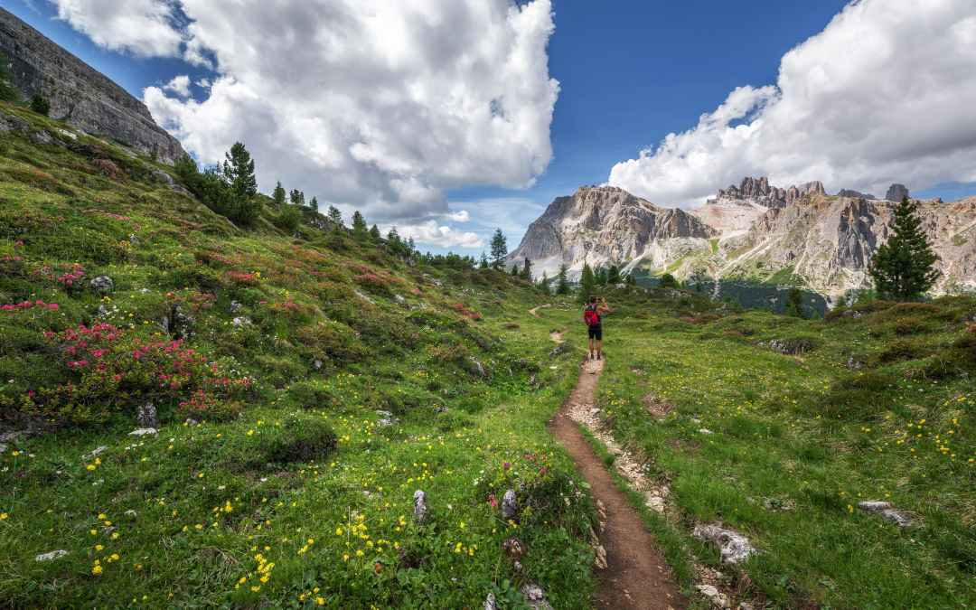 The Best Hiking Parks in the United States