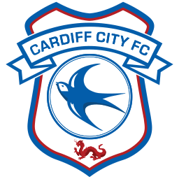 team photo for Cardiff City
