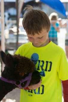 GH County Fair 2014-115