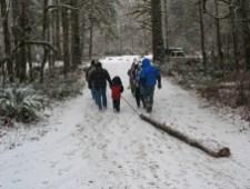 yule log celebration people pulling log in snow