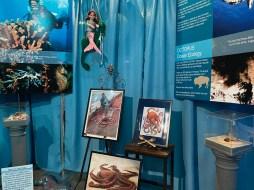 International Mermaid Museum aberdeen 13