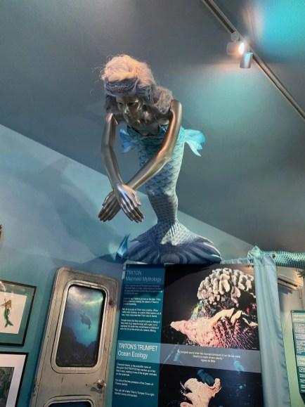 International Mermaid Museum aberdeen 16