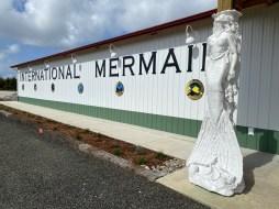 International Mermaid Museum aberdeen 20
