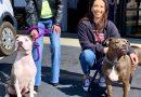 Pet Adoption Day at Hellbender Harley-Davidson