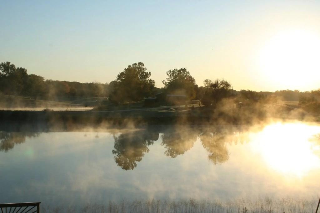 steamy-morning