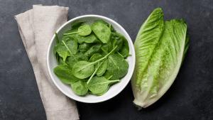 Layered Salad Recipe