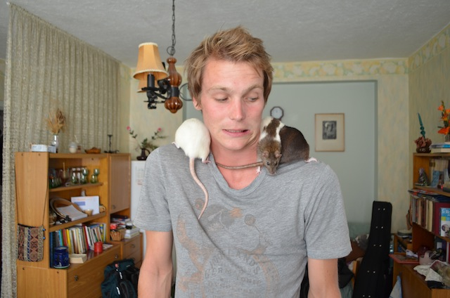 In Estonia, the girl I stayed with was training these three rats to do tricks