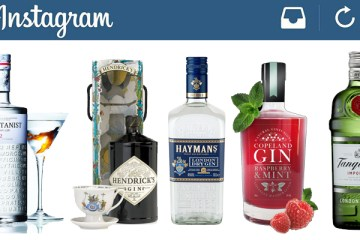 Top 5 Gin Brands